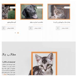 طراحی سایت حیوانات